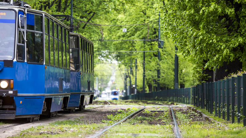 Blue tram driving through green alley in European city of Krakow stock photography