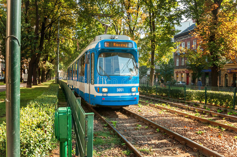 The blue tram on green alley royalty free stock image