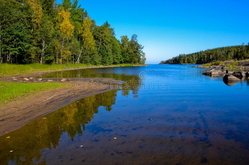 Blue, transparent shallow river with large stones. Blue clear sky. Along the shores are green pine forest and yellow birch trees. The left sandy shore is royalty free stock image