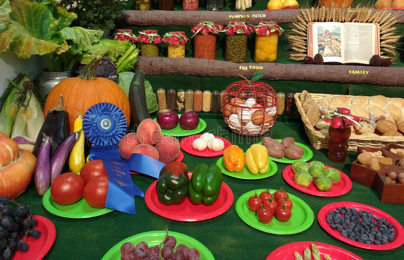 Fruits and Vegetables Awarded the Blue Ribbon at a County Fair, Grange, 4-H Club, USA. And the winner is... A blue first place ribbon has been awarded to this royalty free stock photo