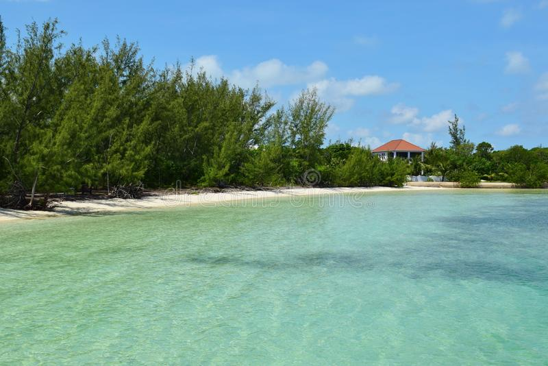 Blue tropical ocean at Green Turtle Cay in Bahamas. Crystal clear turquoise aqua waters of Caribbean in tropical island in Bahamas. Coastline lined with trees stock image