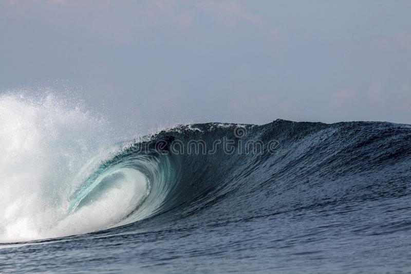 Blue tropical surfing wave breaking over coral reef stock photo