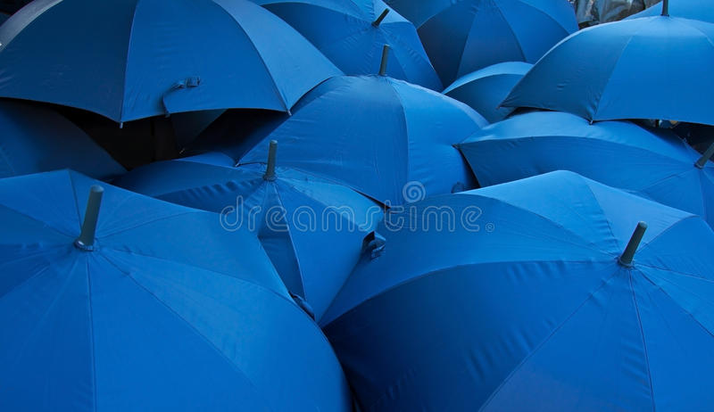 Blue umbrellas royalty free stock photo