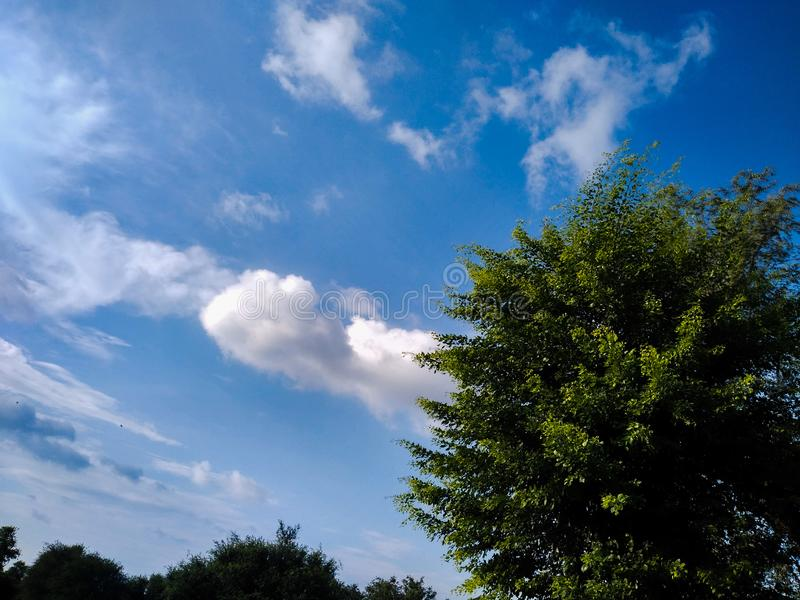 Blue vibrant sky with clouds. royalty free stock photography
