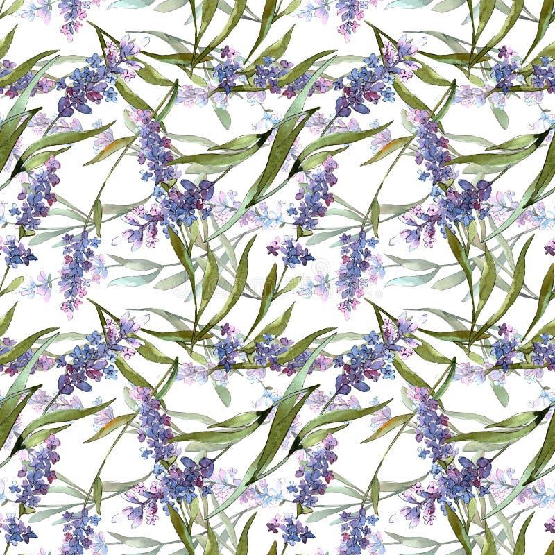 Blue violet lavender floral botanical flowers. Watercolor background illustration set. Seamless background pattern. vector illustration