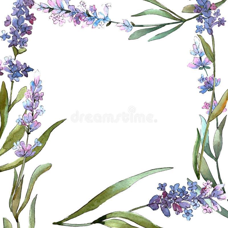 Blue violet lavender floral botanical flowers. Watercolor background illustration set. Frame border ornament square. royalty free illustration