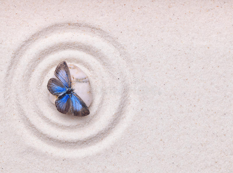 A blue vivid butterfly on a zen stone with circle patterns. In the white grain sand royalty free stock photos