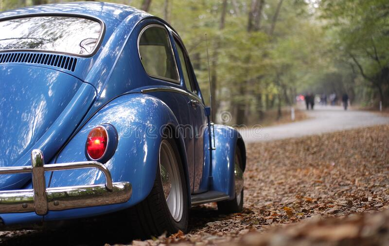 Blue Volkswagen Beetle Vintage Car Surrounded by Dry Leaves during Daytime royalty free stock images