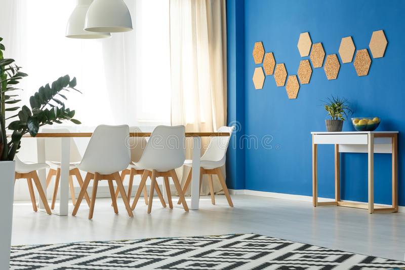 Room with blue wall accent. Blue wall accent in minimalist modern living room with open dining area, scandinavian design, window and natural decor royalty free stock photography