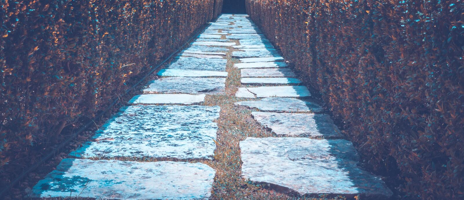 Blue, Wall, Water, Line royalty free stock photography