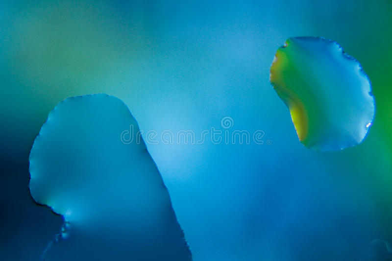 Blue water drops - macro stock photo