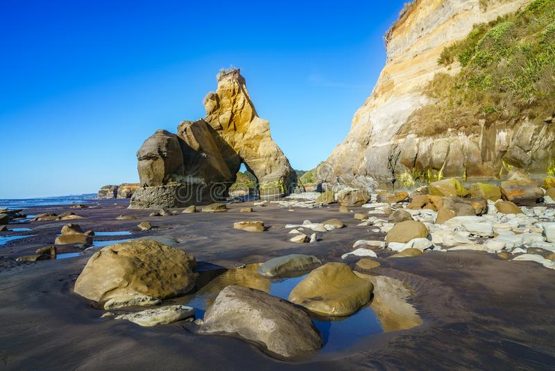 On the beach, 3 sisters and elephant rock, new zealand 47 royalty free stock images