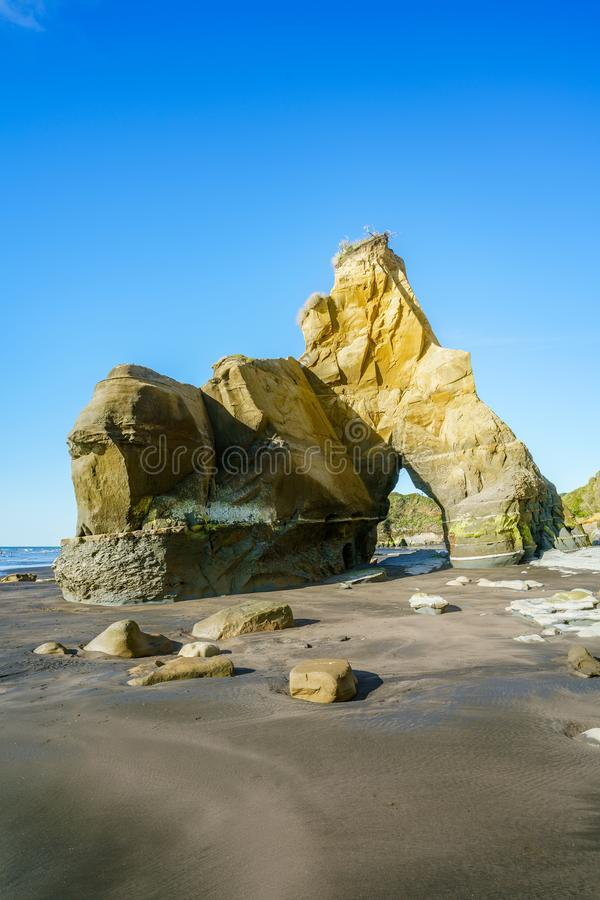 On the beach, 3 sisters and elephant rock, new zealand 56 royalty free stock image