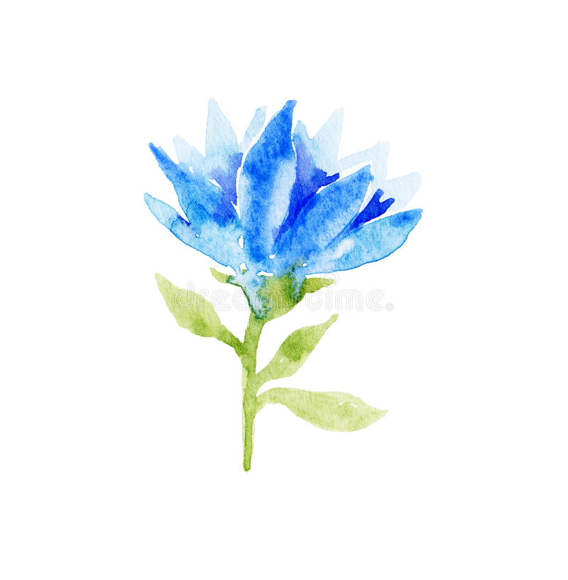 Blue watercolor flower. royalty free illustration