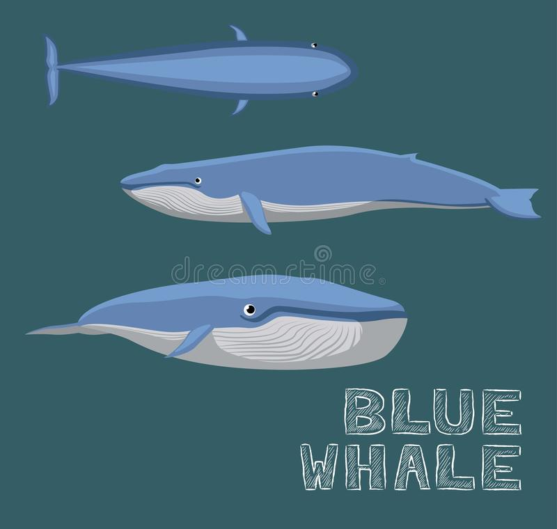 Blue Whale Cartoon Vector Illustration royalty free illustration