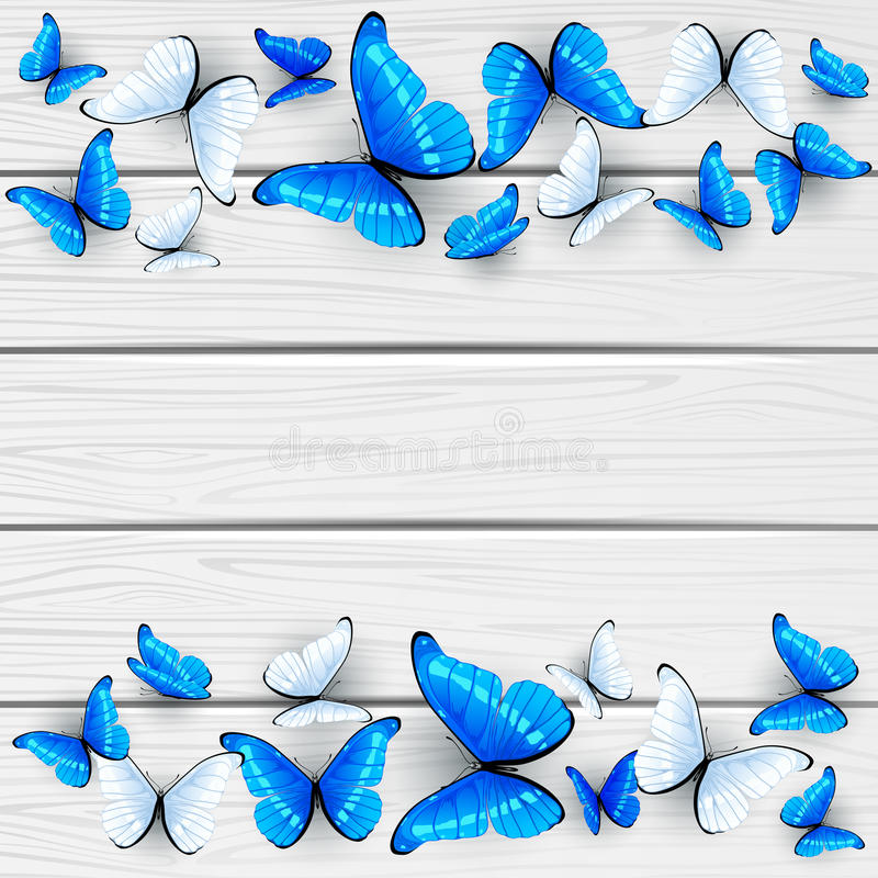 Blue and white butterflies on wooden background vector illustration