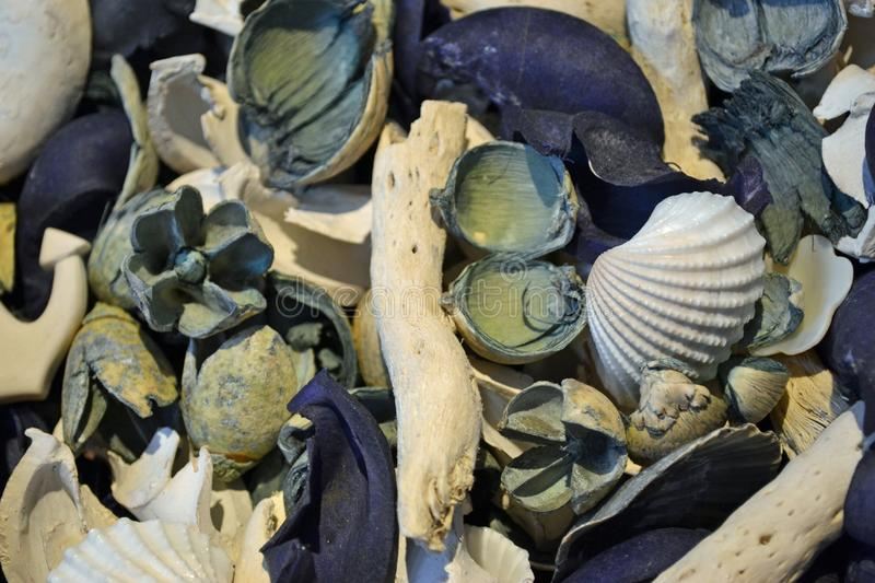 Blue and white decorations shells and wood stock photography