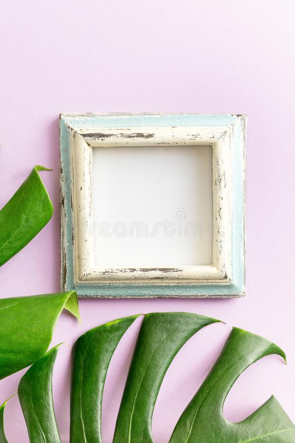 Blue and white empty photo frame and tropical leaves mockup on purple background. Travel concept. Text royalty free stock images