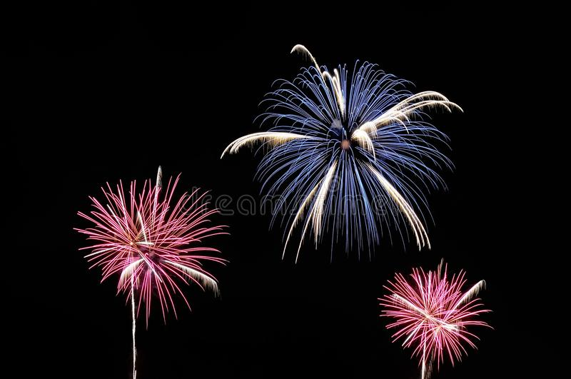 Blue, white and pink fireworks on dark background royalty free stock photo