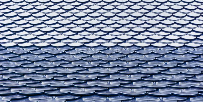 Blue and white roof stock photography