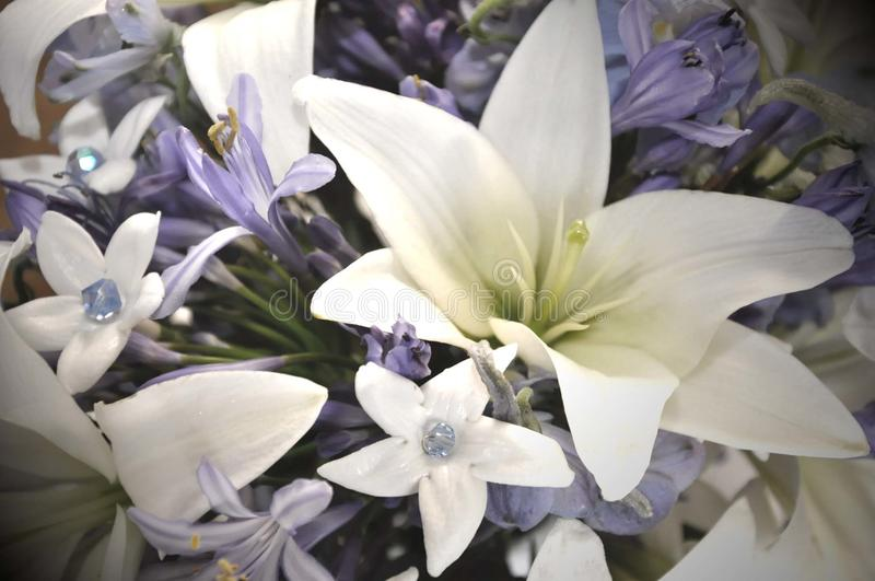 Blue and white wedding flowers royalty free stock photo