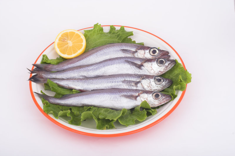 Download Blue Whiting ( fish ) stock image. Image of cholesterol - 521585