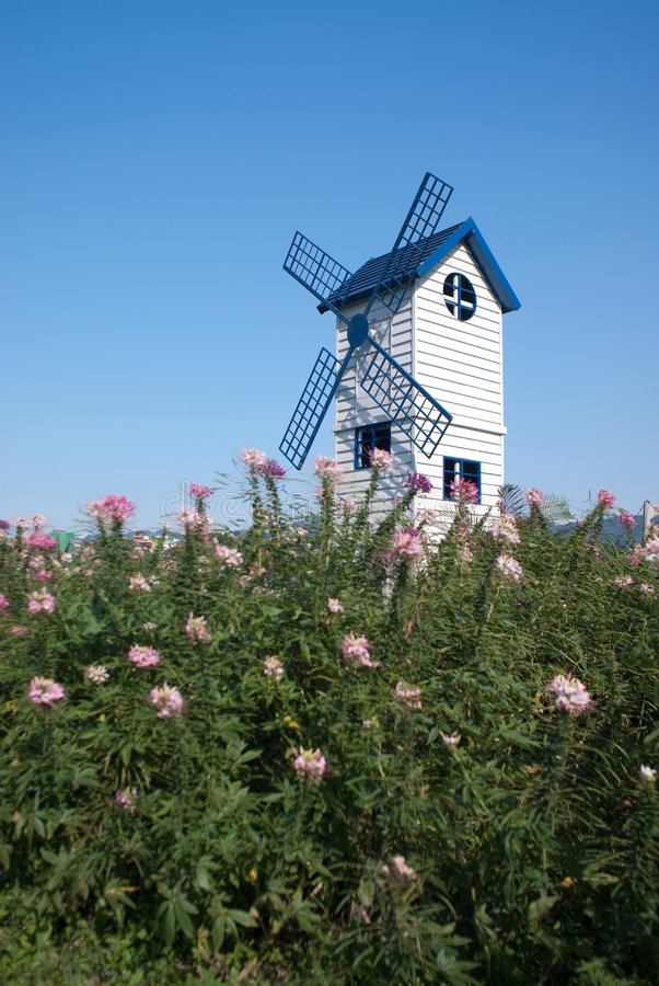 Blue windmill with flower. Blue windmill and flower with blue sky stock photos
