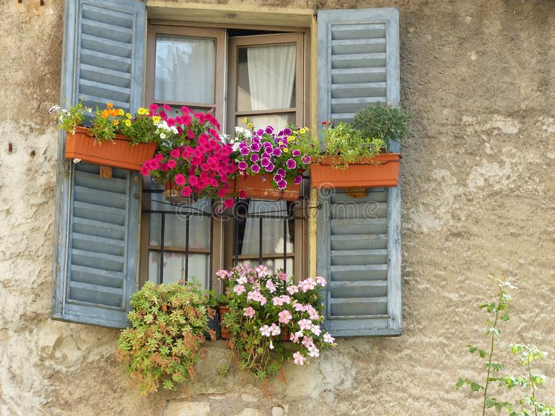 Blue window with some vases of colored flowers. Bergamo. Italy. stock photography