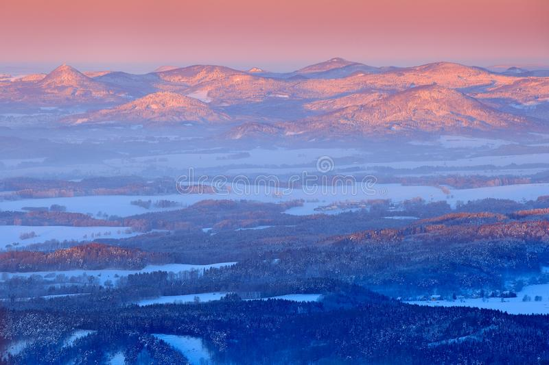 Blue winter landscape, birch tree forest with snow, ice and rime. Pink morning light before sunrise. Winter twilight, cold nature royalty free stock image