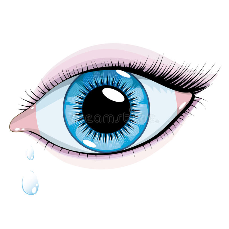 Blue woman's eye. Vector beautiful blue eyes woman on a white background