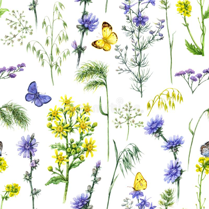 Blue and Yellow Field Flowers Pattern royalty free illustration