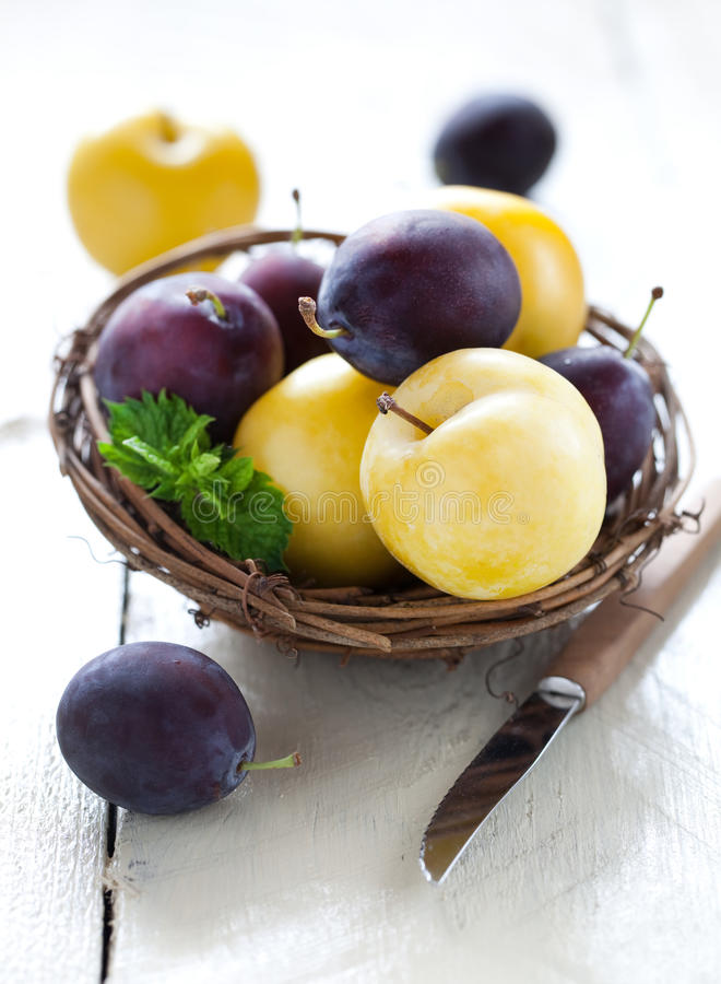 Download Blue and yellow plums stock photo. Image of tasty, healthy - 20901844
