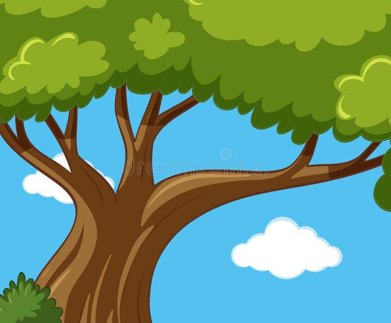 blue zielone niebo drzewo ilustracja wektor