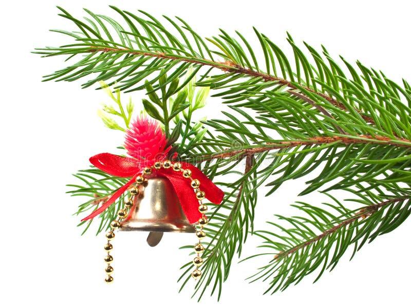 bluebell Χριστούγεννα στοκ εικόνα με δικαίωμα ελεύθερης χρήσης