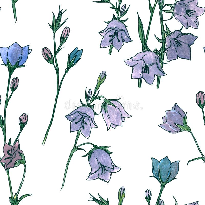 Bluebell or Bellflower Campanula hand-drawn watercolor illustration, seamless pattern. Bluebell or Bellflower Campanula, Spring Flower hand-drawn watercolor stock illustration