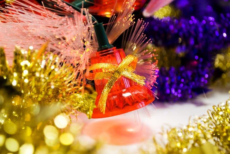 Bluebell do Natal fotos de stock