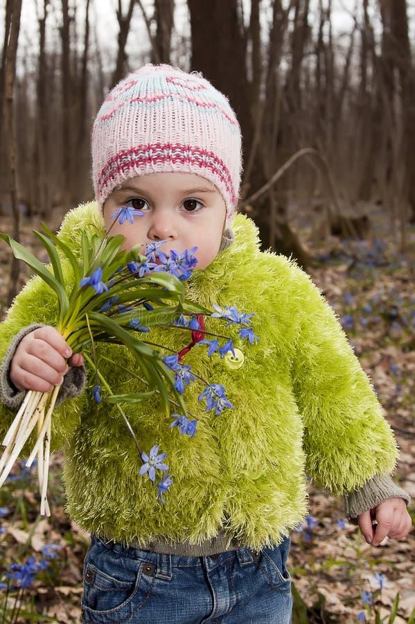 bluebells δασική άνοιξη κοριτσιών δεσμών στοκ εικόνα με δικαίωμα ελεύθερης χρήσης