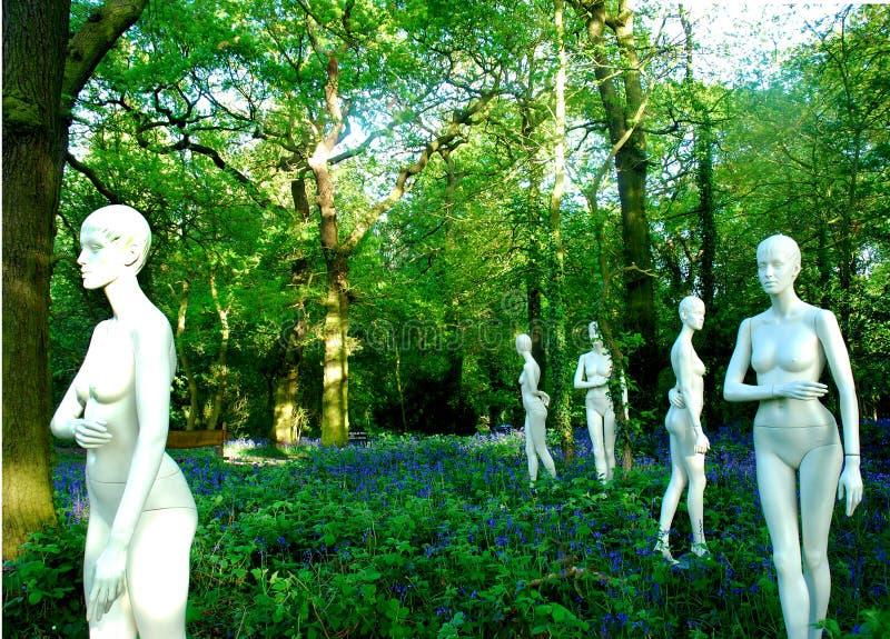 bluebells mannequins zdjęcie stock