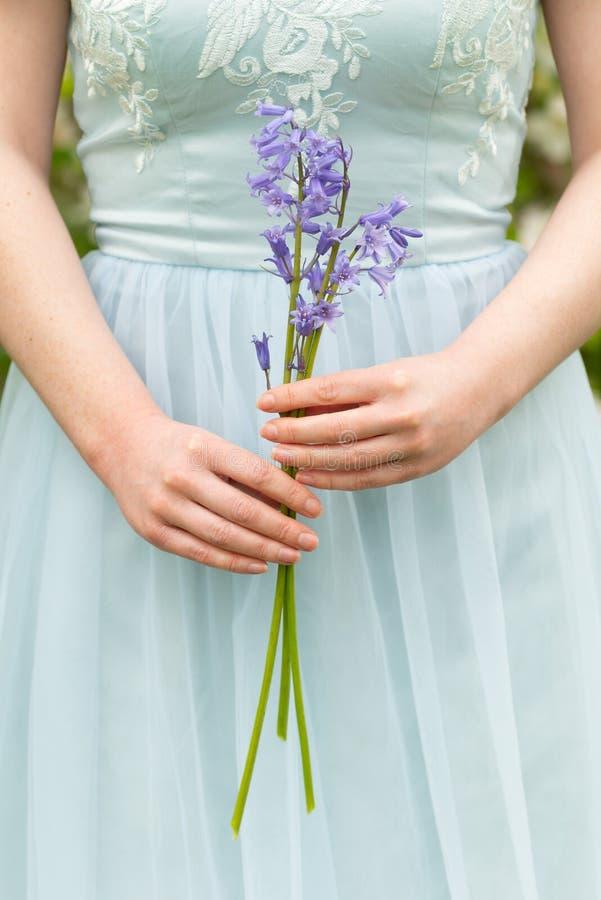 Bluebells Trzyma W kobiet rękach obraz royalty free