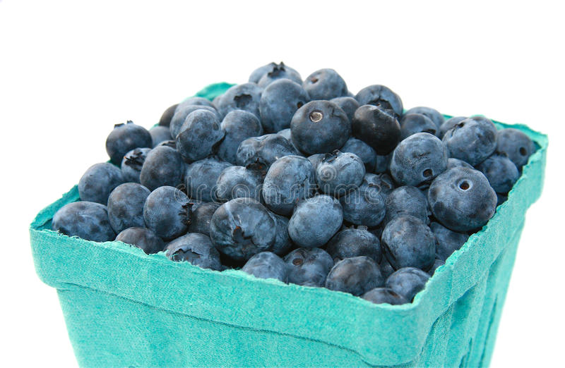 Blueberries. Freshly picked organic blueberries in a cardboard quart container isolated on a white background royalty free stock photo
