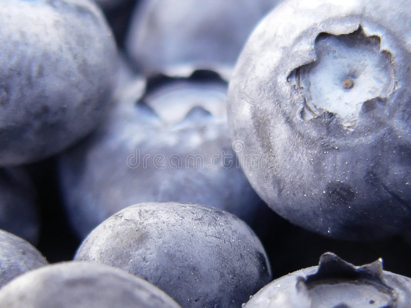 Download Blueberries stock image. Image of healthy, food, blue, produce - 166891