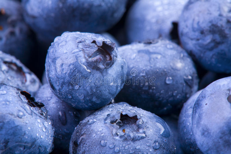 Download Blueberries stock image. Image of details, ripe, diet - 17744381