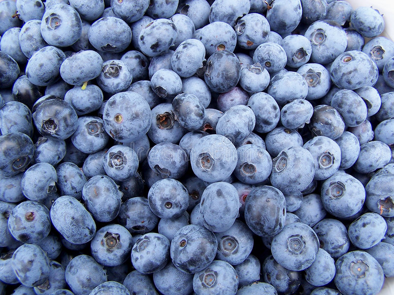 Download Blueberries stock image. Image of sweet, vaccinium, fruity - 2069429