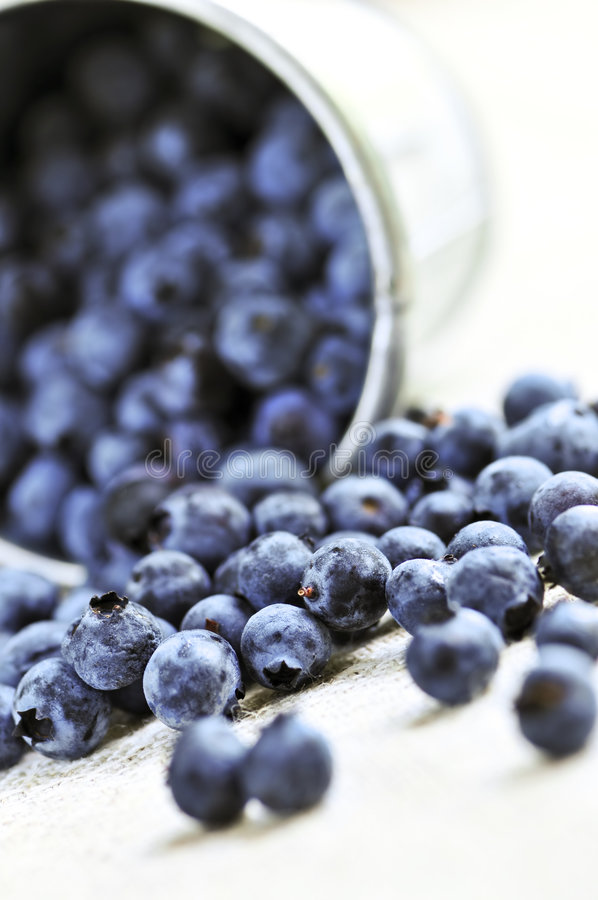 Download Blueberries stock photo. Image of closeup, detail, berries - 6614464
