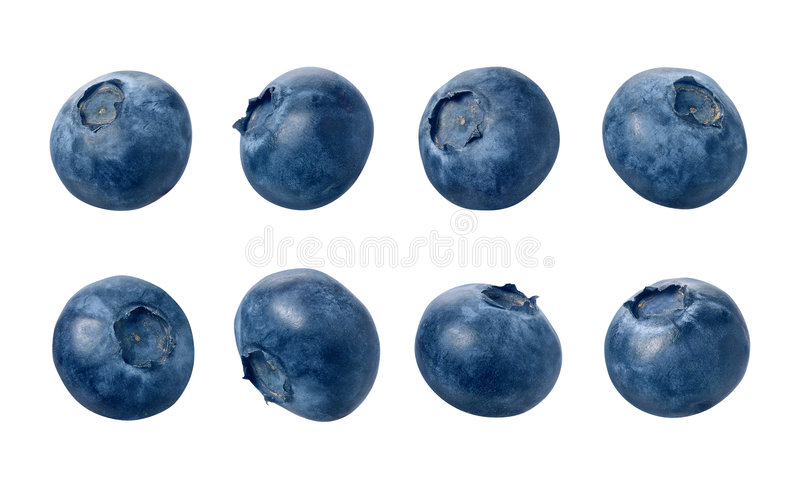 Blueberries. Isolated with a clipping path, on a white background. Isolation is on a transparent layer in the PNG format stock image