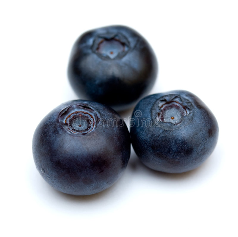 Download Blueberries stock image. Image of food, colourful, blueberry - 8089587