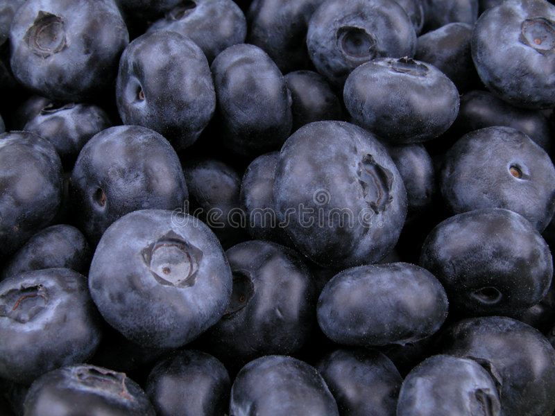 Blueberries background royalty free stock photos