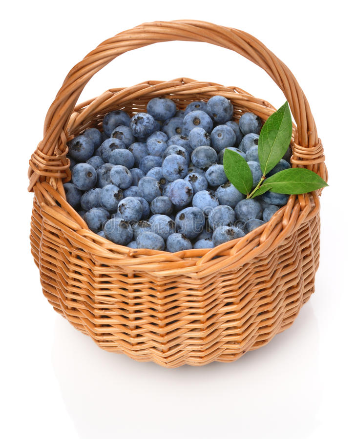 Blueberries in a basket stock photography