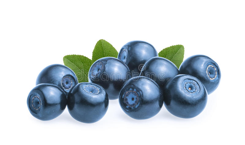 Blueberries & x28;bilberries& x29; isolated on white background.  stock image