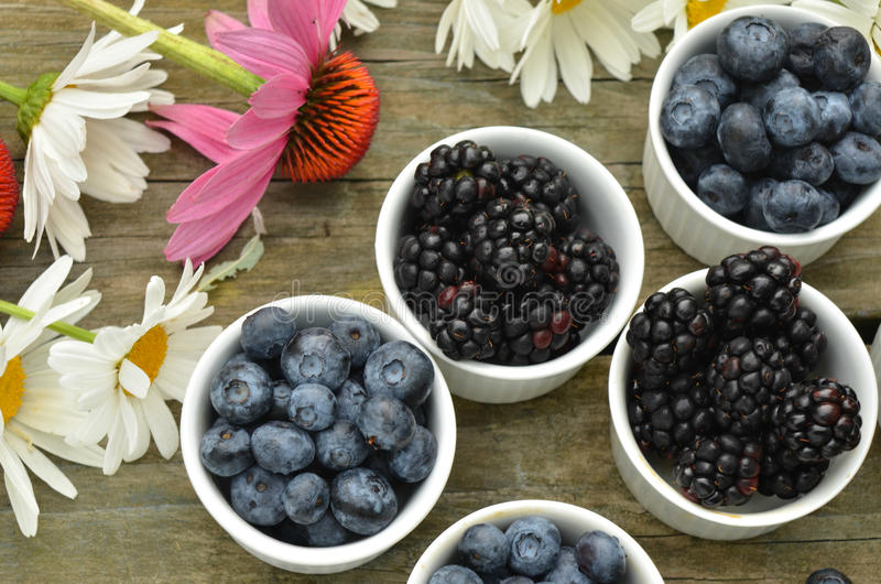 Blueberries and blackberries garden daisies on rustic wood table. Blueberries and blackberries in small white ramekin portions with garden daisies on rustic wood stock image